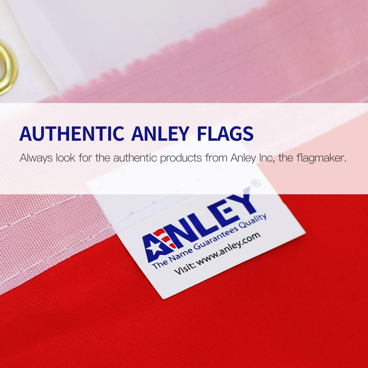 Anley Fly Breeze 3x5 Foot Donald Trump 2020 Flag - Vivid Color and Fade Proof - Canvas Header and Double Stitched - NO More Bullshit Flags Polyester with Brass Grommets 3 X 5 Ft : Garden & Outdoor