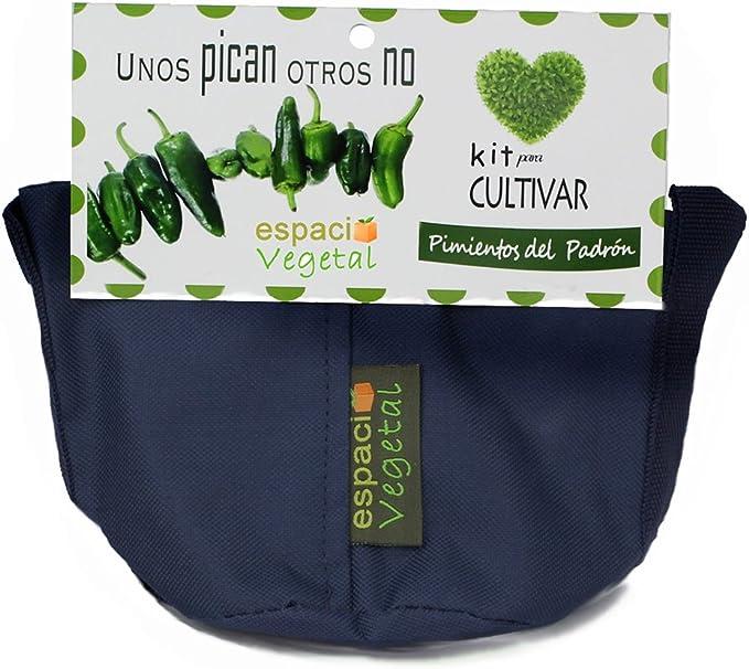 Kit cultivo pimientos del Padrón. UNOS PICAN OTROS NO.: Amazon.es ...
