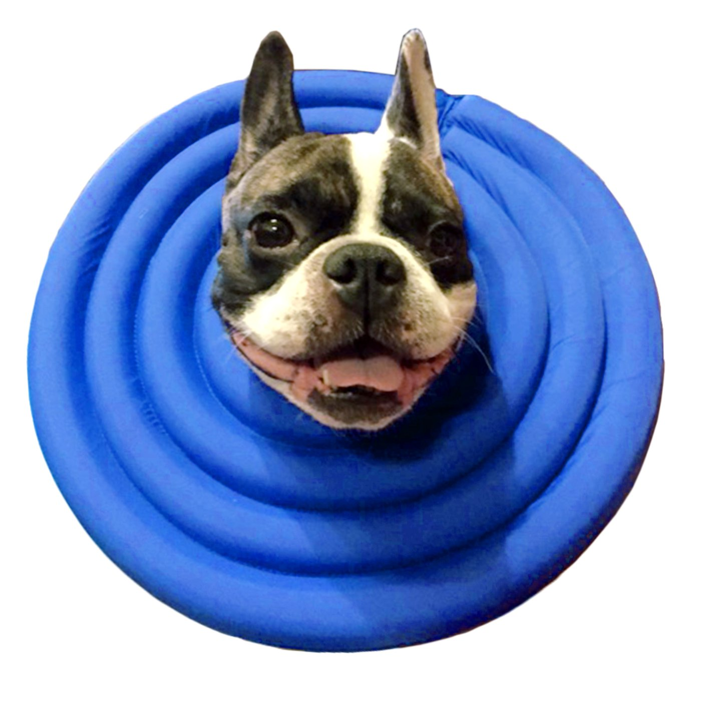 Navy Small Navy Small Alfie Pet Toby Waterproof Recovery Collar for Dogs and Cats color  bluee, Size  Small