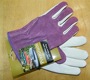 b0e6f347c Town & Country Premium - Leather Gloves, Ladies Size - M Purple - -  Amazon.com