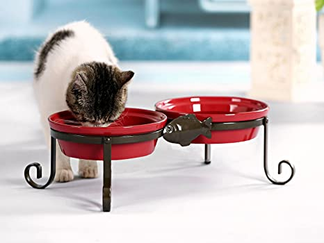 Amazoncom SparkWorks Elevated Cat Feeding Station Berry