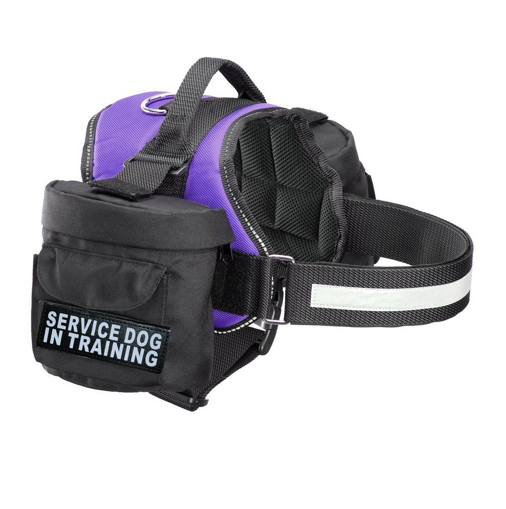 Purple Girth 30-42\ Purple Girth 30-42\ Doggie Stylz Service Dog in Training Harness with Removable Saddle Bag Dogs Backpack Harness Pack Carrier. 2 Removable Patches. Please Measure Dog Before Ordering. Made