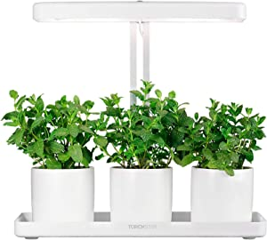 TORCHSTAR Indoor Garden Kit, Herb and Kitchen Garden Grow Light, Auto-Timer Function, 24V Low Voltage, Height Adjustable CRI 95 Real Color for Plant Enthusiasts, Rosemary