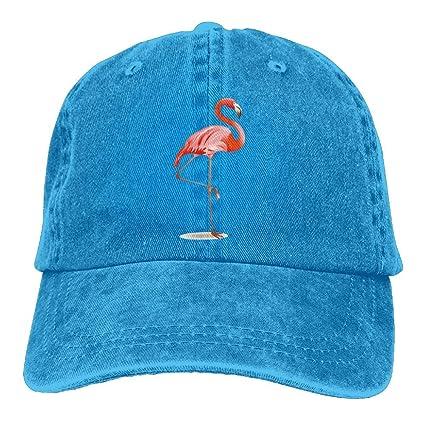 Amazon.com  Vintage Baseball Cap Pink Flamingo Baseball Hat Cap For ... a51a4410004