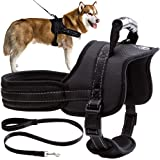 Mihachi Dog Harness with Leash with Handle No Pull No Chock Adjustable Padded Vest Harness for Dogs