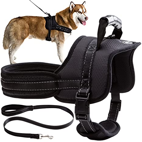 Amazon.com : Mihachi Dog Harness with Leash with Handle No Pull No
