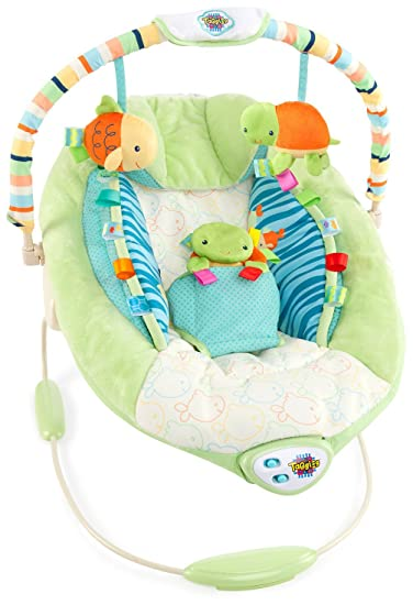 a8ca951558be Amazon.com   Taggies Green Blue Deluxe Soothe Me Softly Baby Bouncer ...