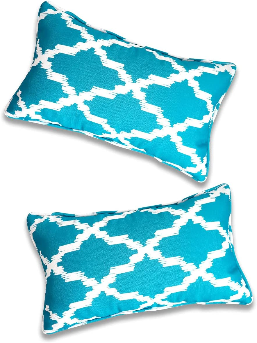 Vanteriam 2 Pack Indoor Outdoor Waterproof Lumbar Throw Pillow Cover ONLY, Decorative Rectangular Outdoor Pillow case with Piping for Patio Furniture Set, 12''x20'' MH-Y096 Deep SkyBlue
