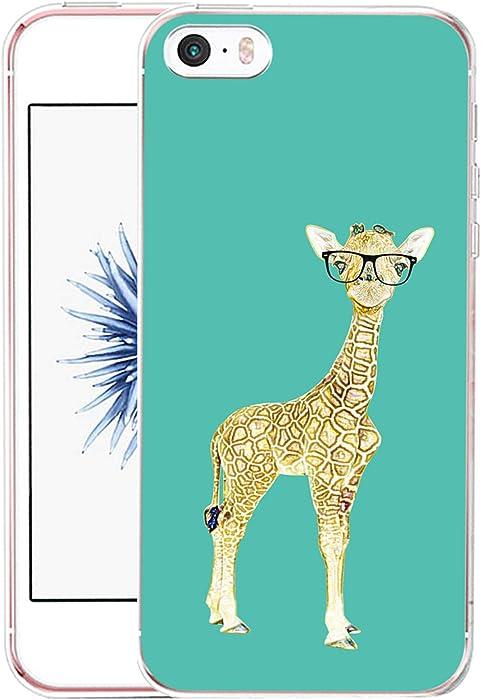 Top 8 Giraffe Licking Apple