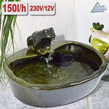 Amur Gartenbrunnen Solar Brunnen Solarteichpumpe Solar Springbrunnen Solar Wasserspiel Froschparadies Zierbrunnen Frosch Vogelbad Solar Pumpe Solar