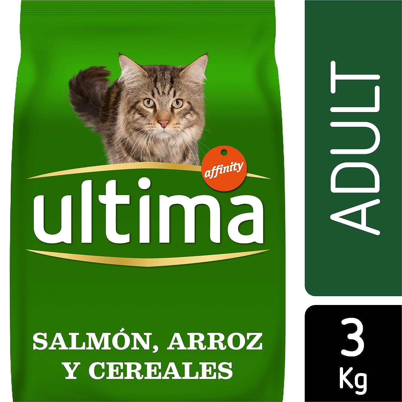 Ultima Pienso para Gatos Adulto con Salmón: Amazon.es: Productos para mascotas