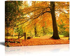 """Canvas Prints Wall Art - Beautiful Yellow Autumn/Fall Forest Scene with Fallen Leaves - 24"""" x 36"""""""