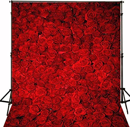 10x10 ft Red Rose Flowers Wall Photography Backdrop Seamless Romantic 3D  Floral Wedding Background for Photo Studio Anniversary Party Picture Prop