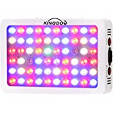 KINGBO Optical Lens-Series 300W Full Spectrum LED Grow Light for Indoor Plants Veg and Flower, Garden Greenhouse Hydroponic Grow Lights. (12-Band, 5W/LED)