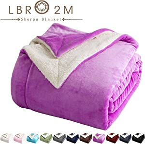 LBRO2M Sherpa Fleece Bed Blanket Queen Size Super Soft Fuzzy Plush Warm Cozy Fluffy Microfiber Couch Throw Velvet Double Reversible Luxurious Blankets (Purple, Queen(90x90 Inches))