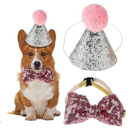 HEEPDD 2 Unids Sombrero de Cumpleaños, Perro Mascota Perro ...