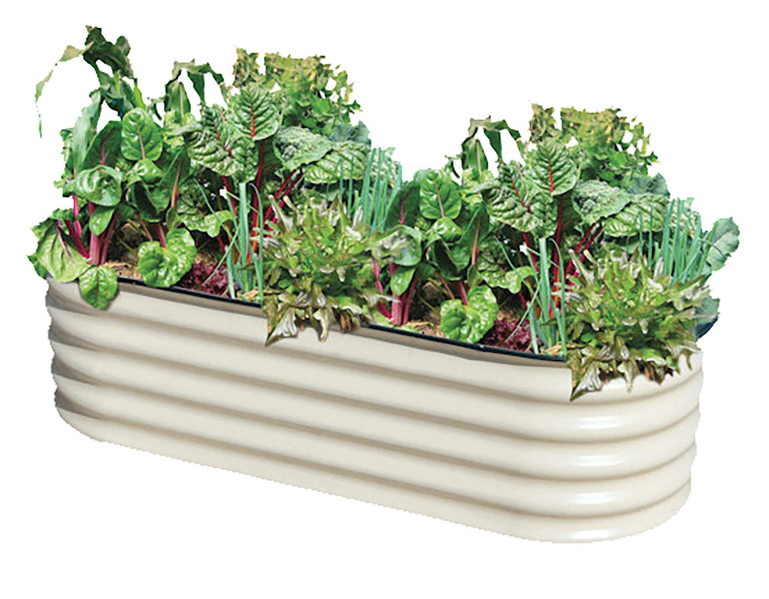 Metal Garden Bed, Jungle Jane's Raised Garden Box, 4 x 7 ft Outdoor Planter