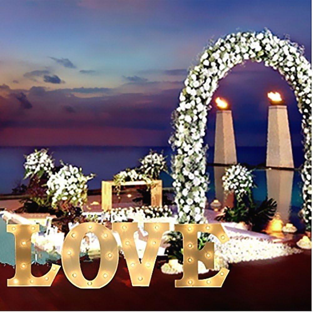 batteriebetrieben B mit Alphabet Buchstabe A bis Z aus Holz Karneval DIY-Buchstaben-Schild Party Hochzeit Weihnachten Marquee Taixinpower Deko-Licht