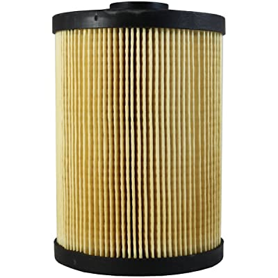 Luber-finer L8893F Heavy Duty Fuel Filter: Automotive