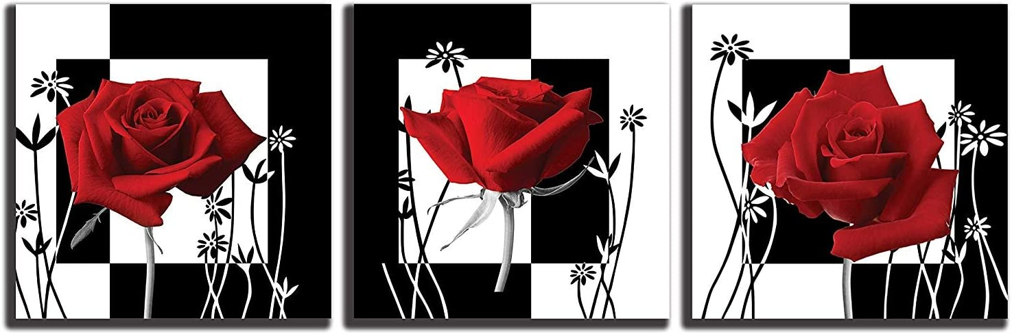 NAN Wind Canvas Print 3 Pcs Black and White Red Rose Canvas Art Abstract Wall Art Decorations Flower Picture on Canvas for Home Decor Stretched and Framed 12X12inches