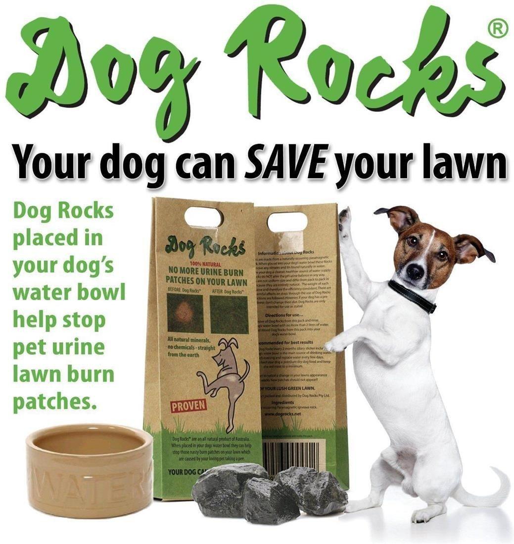 3 Packs Dog Rocks 200g Lawn Burn Predection 100% Natural 6 Month Supply