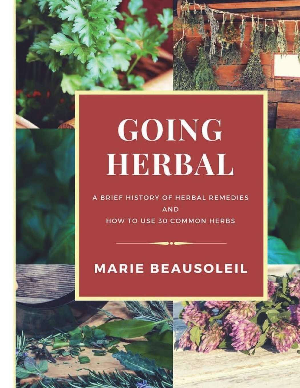 Read Online Going Herbal: Brief History of Herbal Remedies & Recipes Using 30 Common Herbs PDF