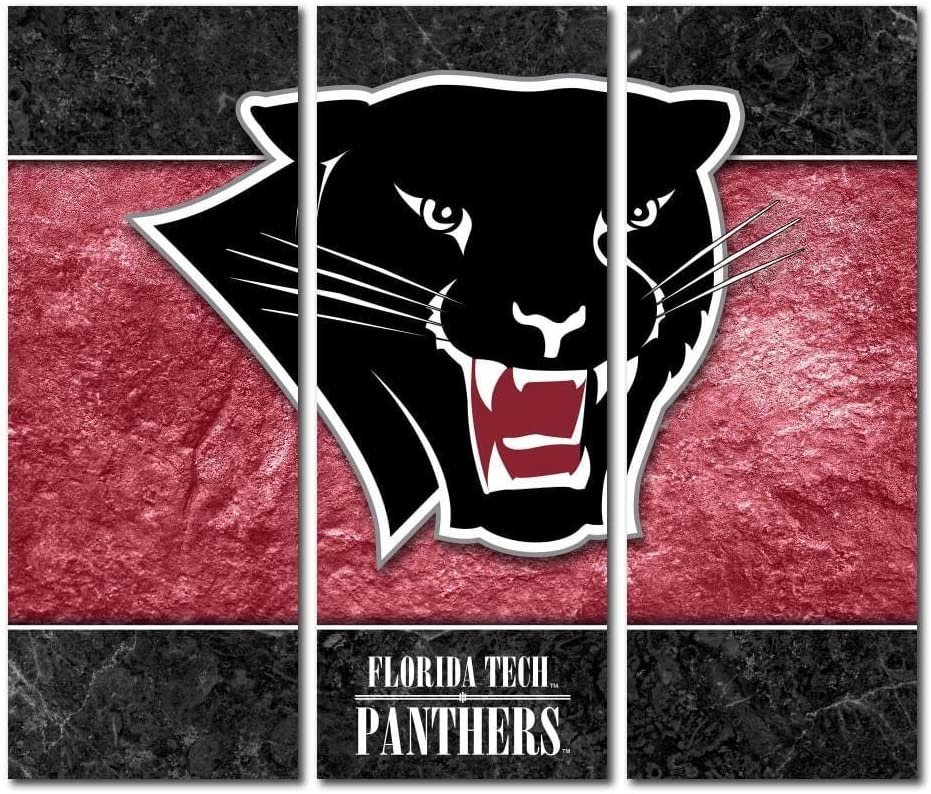 Amazon Com Victory Tailgate Florida Institute Of Technology Panthers Fit Triptych Canvas Wall Art Double Border 48x54 Inches Sports Outdoors