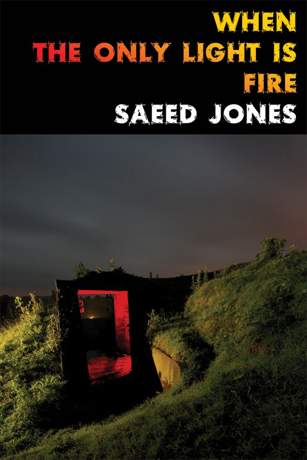 Read Online When the Only Light Is Fire pdf epub