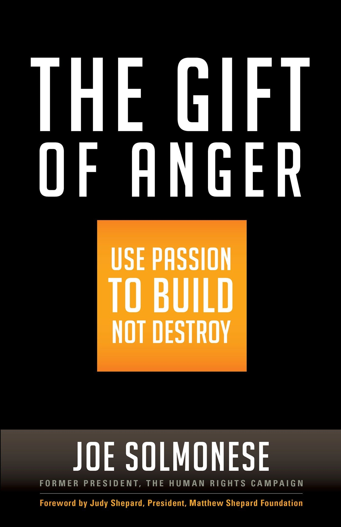 Download The Gift of Anger: Use Passion to Build Not Destroy pdf