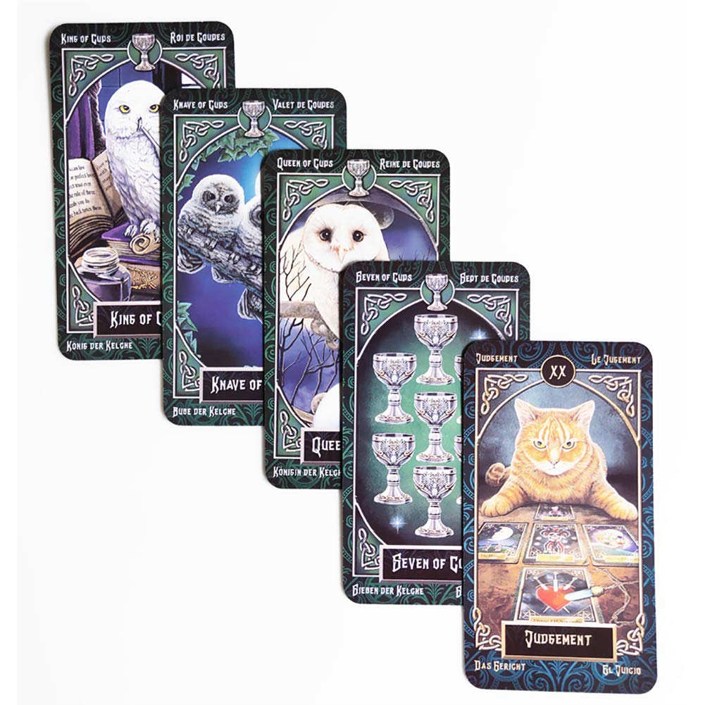 Amazon com: Wuddi Tarot Card Set Fashionable with Storage