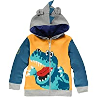 Little Boys Dinosaur Hooded Jacket Cartoon Zipper Kids Sweatshirts Sport Hoodies for Toddler 1-6 Years