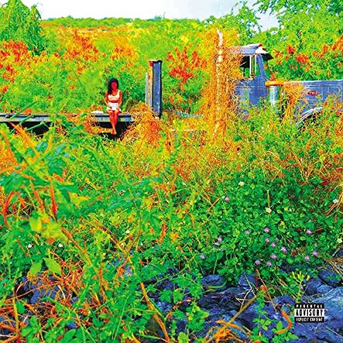 Jhene Aiko - Trip - Deluxe Edition - 2CD - FLAC - 2017 - PERFECT Download