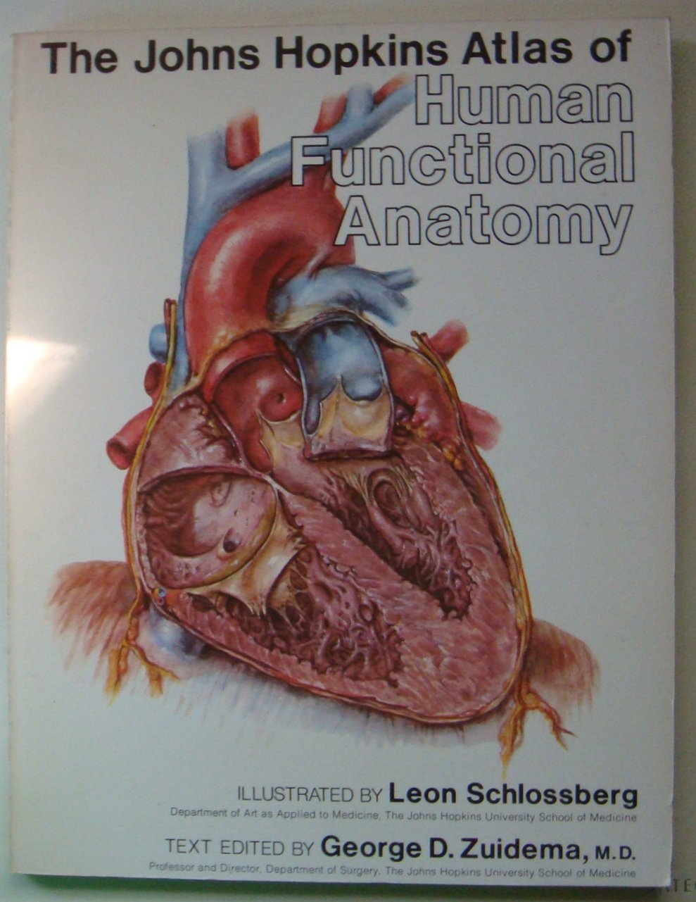 The Johns Hopkins Atlas Of Human Functional Anatomy Leon