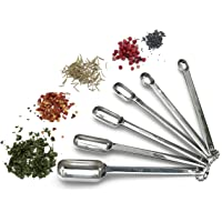 RSVP Endurance 18/8 Stainless Steel Spice Measuring Spoons, 6 Count (DILL)