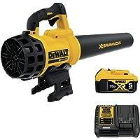 DEWALT 20V MAX XR Blower, Brushless, 5-Ah Battery (DCBL720P1)