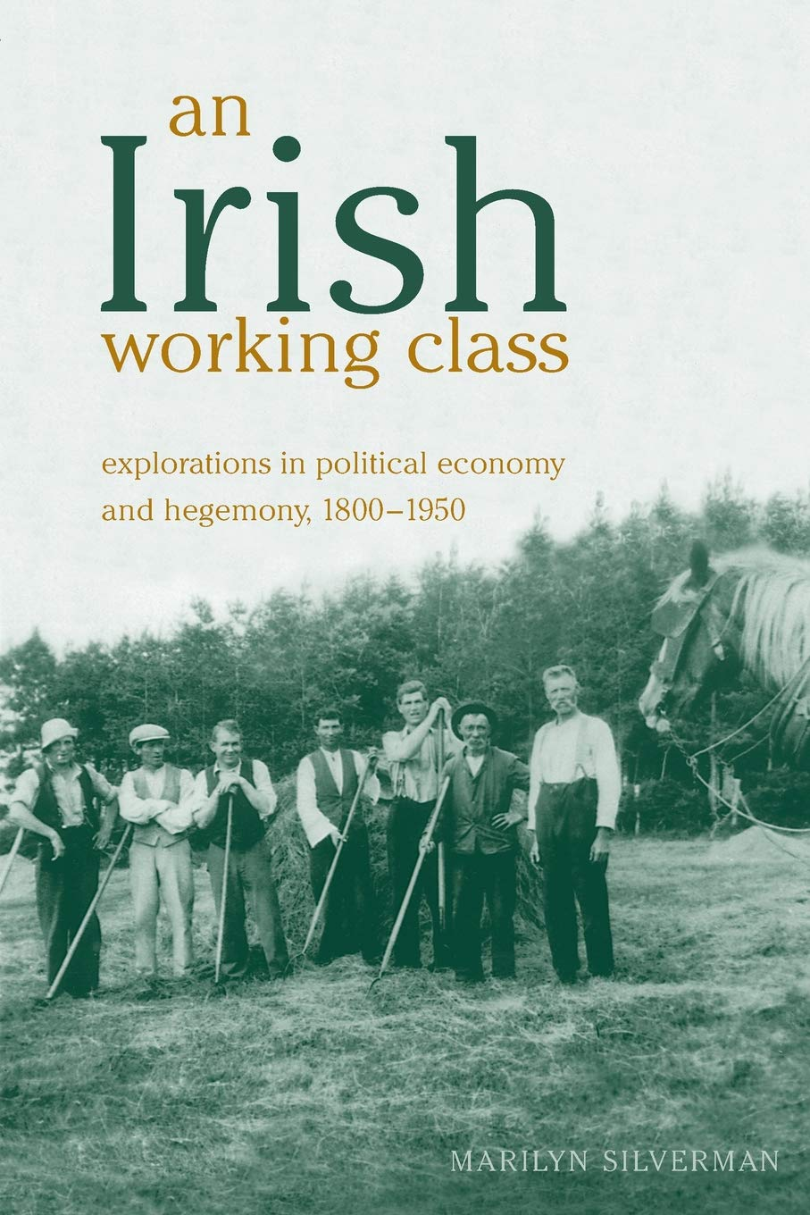Read Online An Irish Working Class: Explorations in Political Economy and Hegemony, 1800-1950 (Anthropological Horizons) ebook