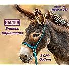 Halter-All Medium Donkey Small Mule Endless Adjustable Halter & Lead USA