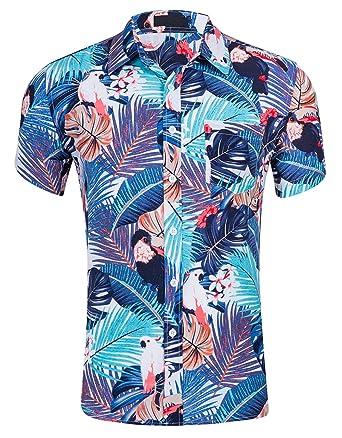 275aa67aefbd Cyparissus Men s Casual Button Down Shirt Cotton Hawaiian Shirt for Beach  (L