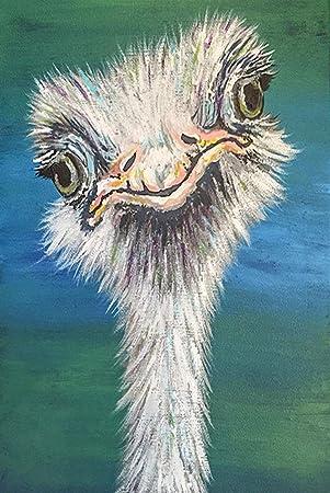 2 Emu DIY 5D Diamond Painting Kit Full Animal SQUARE Drill Craft Cross Stitch