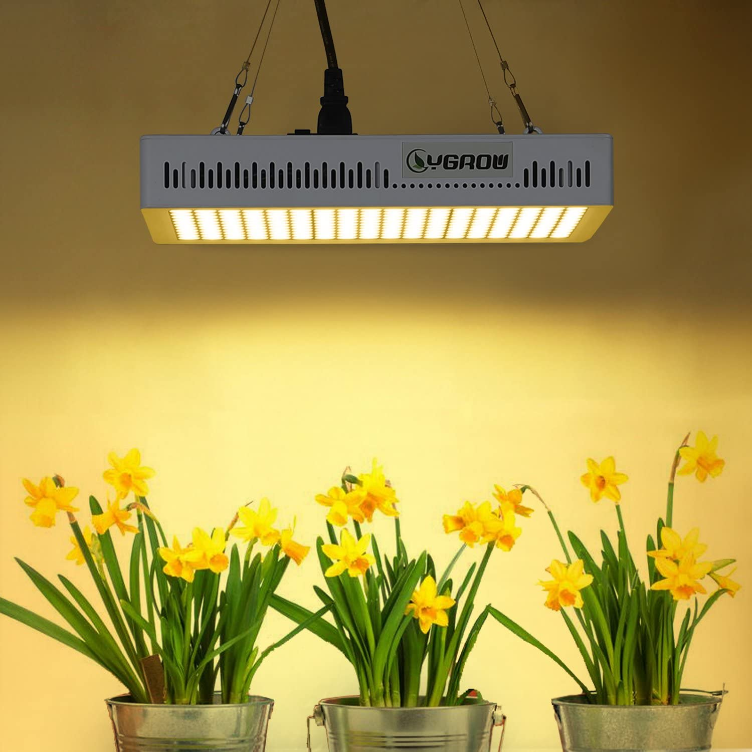 LED Grow Light 1000W,YGROW Plant Light Full Spectrum 3500K for Indoor Plants, Garden, Flowers, Fruits, Vegetables, Greenhouse