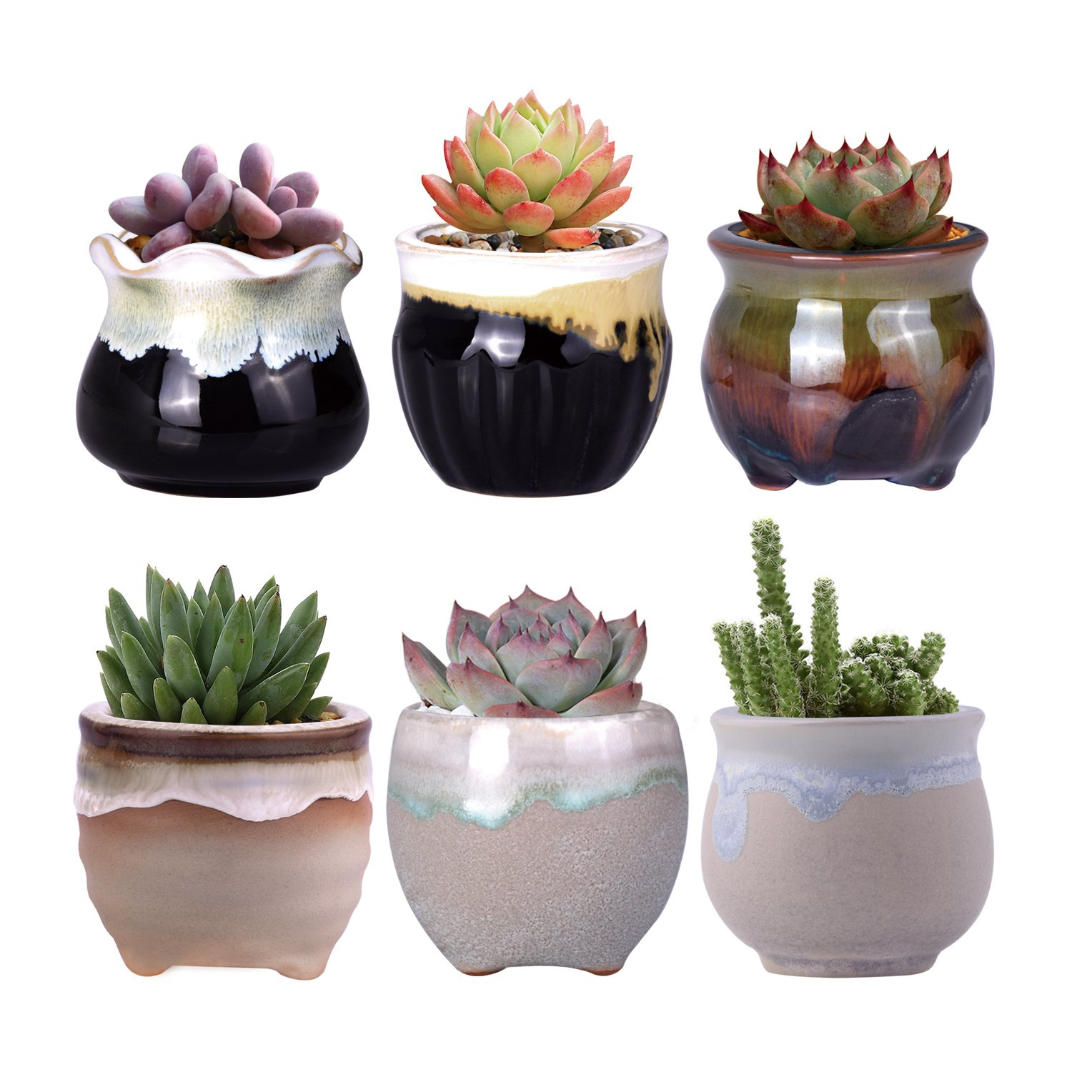 WITUSE small planters cactus planter father's day succulent pots, small cactus pot small succulent pots, glazed ceramic plants pot - 6pcs by WITUSE