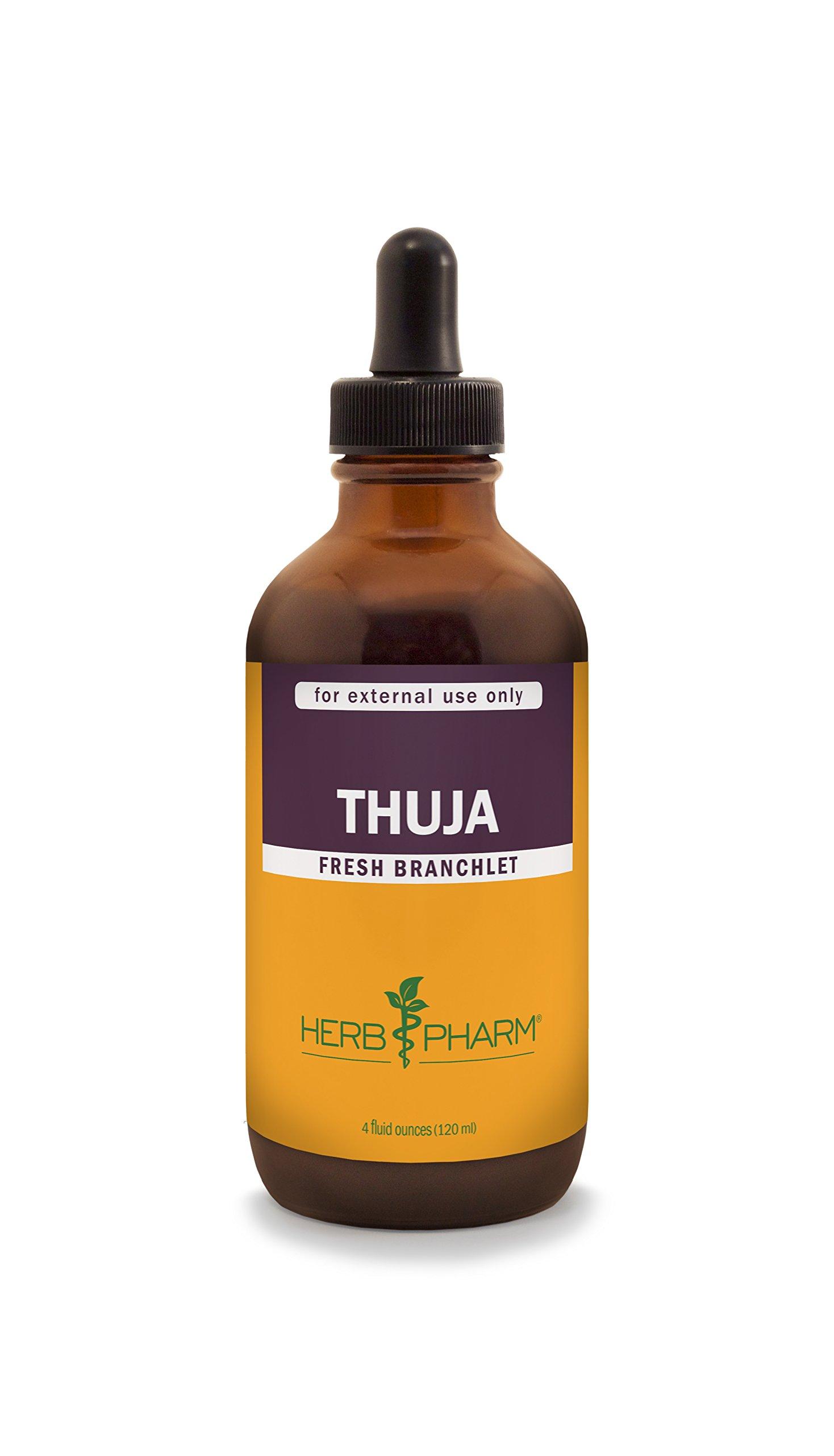 Herb Pharm Thuja Branchlet Liquid Extract - 4 Ounce