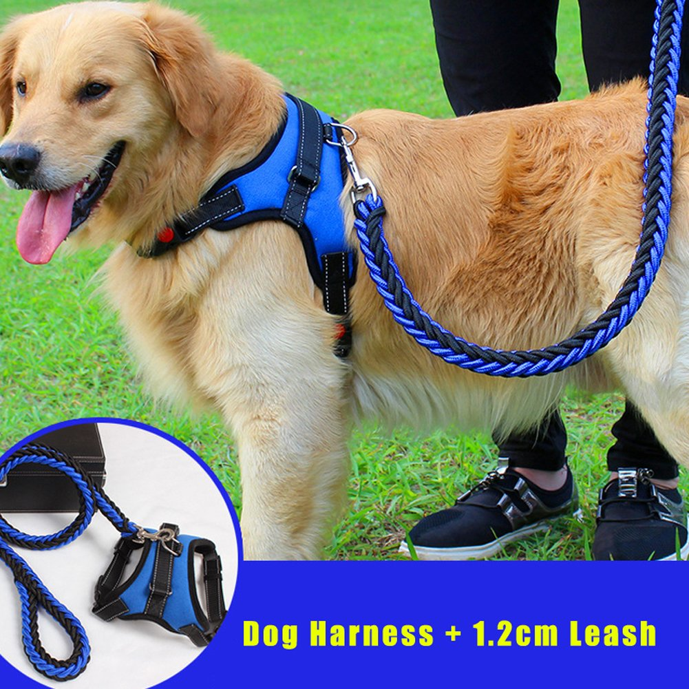 Black and bluee L Black and bluee L J.Y No-Pull Adjustable Durable Dog Harness with Handle for Small Medium Large Dogs (L, Black and bluee)