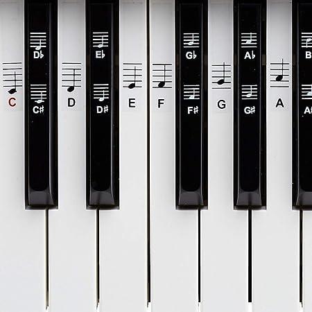 Piano + Keyboard Notas de piano + Gratis eBook | Premium para 49, 61, 76, 88 teclas Pegatinas Juego completo para Negra + Weisse teclas | C de D de S ...