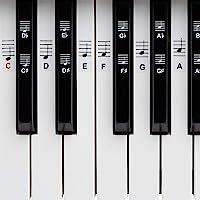 Piano + Keyboard Notas de piano + Gratis