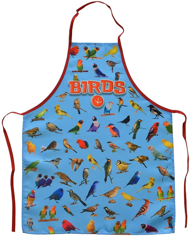 Amazon.com: Birds Apron Blue: Clothing