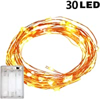 TERSELY Fairy Lights AA Battery Operated, 3M/9.8ft/30 LED String Lights, Waterproof, Indoor Fairy String Lights for Christmas Tree Wedding,Party,Garden Spring Decoration (Warm White)