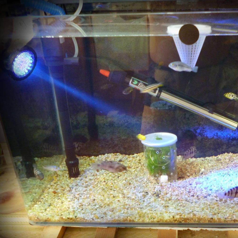 Xcellent Global Foco de 3.5W 36 LED sumergible para acuarios que cambia de color Punto de luz para el jardín , estanque de peces, tanque, fuente de rocalla ...