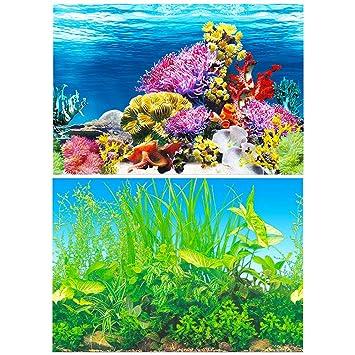 Amakunft - Adhesivo de Fondo para Acuario, Doble Cara, Papel Pintado con Fondo de pecera (Arrecife de Coral y Plantas de Agua): Amazon.es: Productos para ...