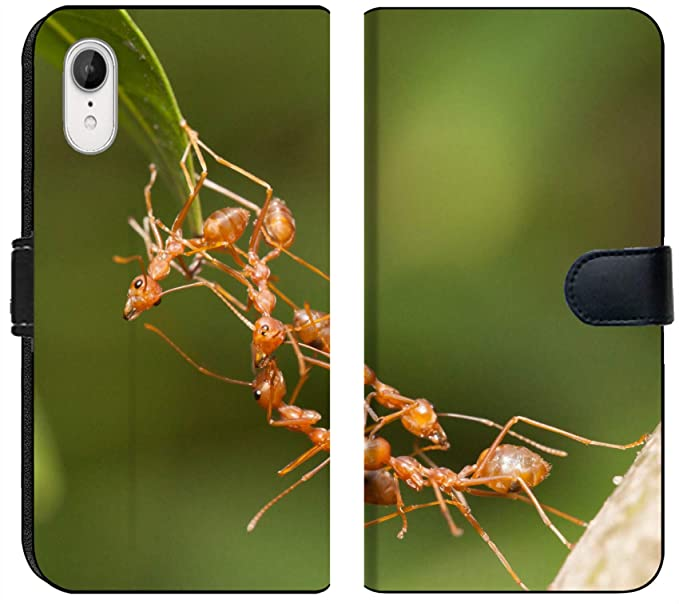 Amazon com: Apple iPhone XR Flip Fabric Wallet Case Image ID